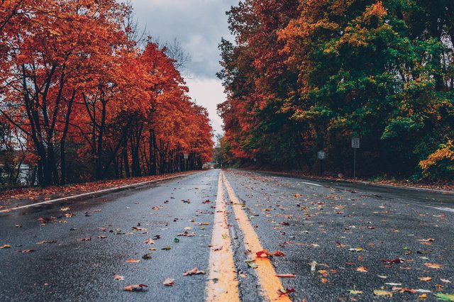 travel-safely-autumn-road